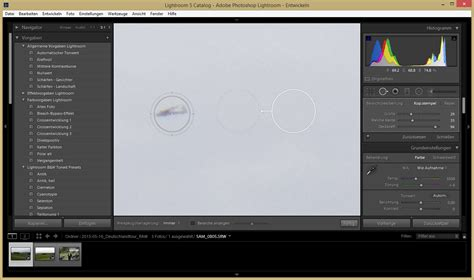 lightroom tutorial bereichsreparatur stempeln in photoshop lightroom und photoshop elements