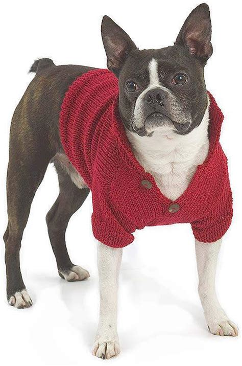 free pattern knit dog sweater easy top 5 free dog sweater knitting patterns loveknitting blog