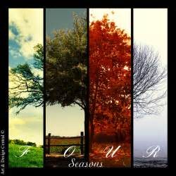 Art music and writing four seasons photograph imagery