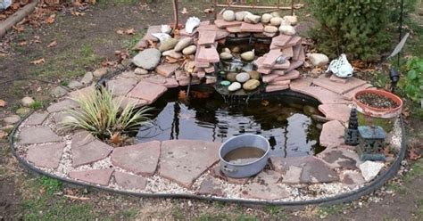 turtle pond in your garden gardening