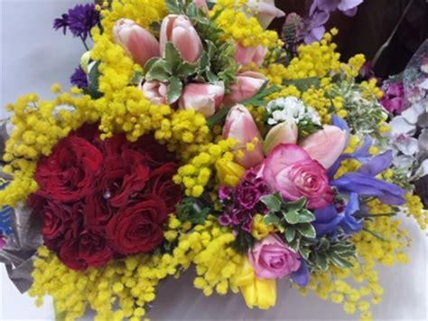 fiore delle donne il fiore delle donne la mimosa