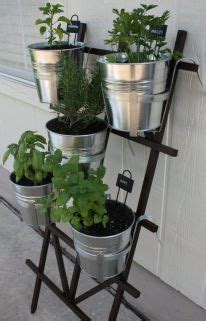 hanging potted herb garden apartment patio gardens herb