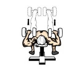 Flat Bench Workouts Home Dumbbell Workout Routine By Building Muscle 101