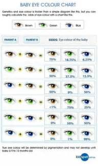 most dominant eye color 1000 images about anatomy science on the