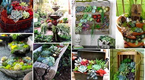 cómo decorar tu jardín con piedras imagen de cosina comedor con barra