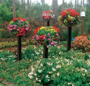 ordinary Pot De Fleur Exterieur #1: pot-de-fleur-exterieur-plantes-multicolore-fleurs-parterre-e1445452079396.jpg