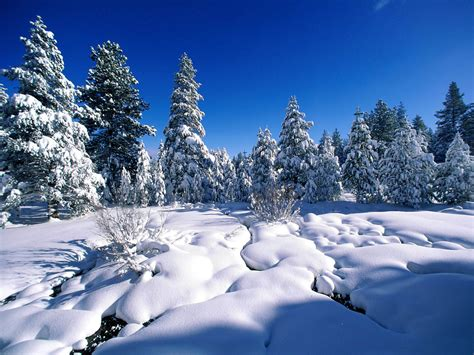 desktop themes snow wallpapers snow wallpapers