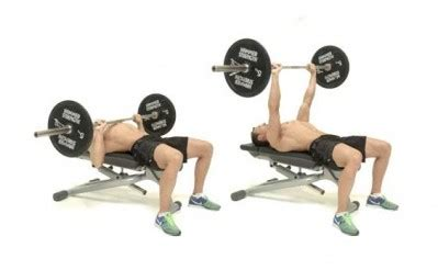best way to improve your bench press muscle palace the ultimate chest workout for mass build