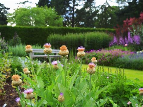 imagenes de jardines ingleses paseando por bellos jardines ingleses