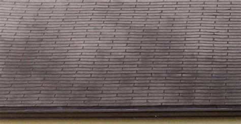 why is there moss on my roof ask forget why are there black streaks on my roof