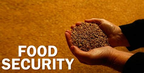 Food Security Bill In India Essay by Food Security Act To Be Implemented In Up From Tuesday