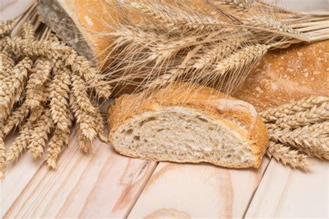 come fare il pane fatto in casa pane fatto in casa con il bimby ricetta unadonna