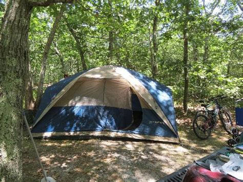cgrounds on cape cod ma horton s cing resort updated 2016 cground reviews