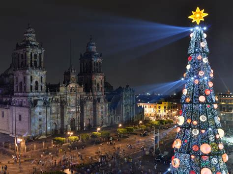 the best christmas trees in the world photos cond 233