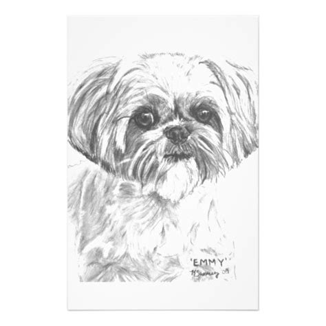 shih tzu coloring book coloring pages
