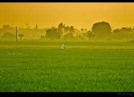 agriculture income to be taxed farmers should pay tax