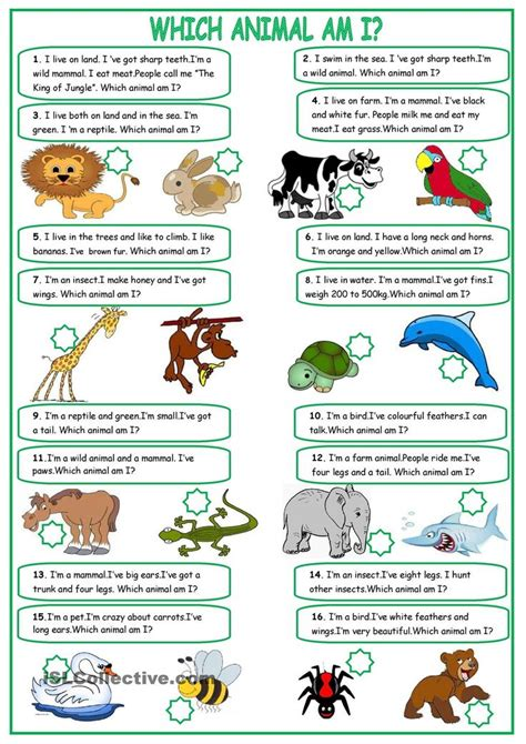 what animal am i new year 1999 640 best esl efl images on grammar