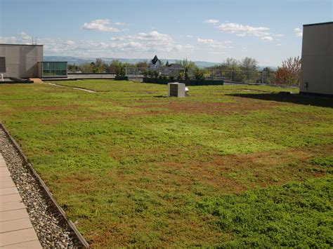 green roof providence st mary medical center greens up with first green roof in walla walla wash