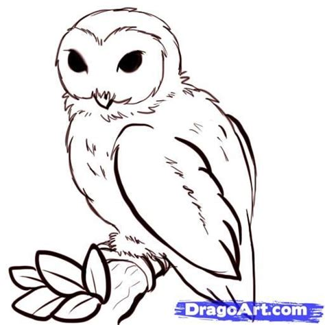 how to draw doodle owl best 25 simple owl drawing ideas on owl
