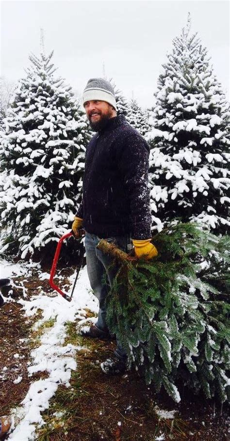 choose and cut your own christmas tree downey treefarm