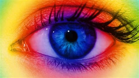 see it in color future what are the limits of human vision