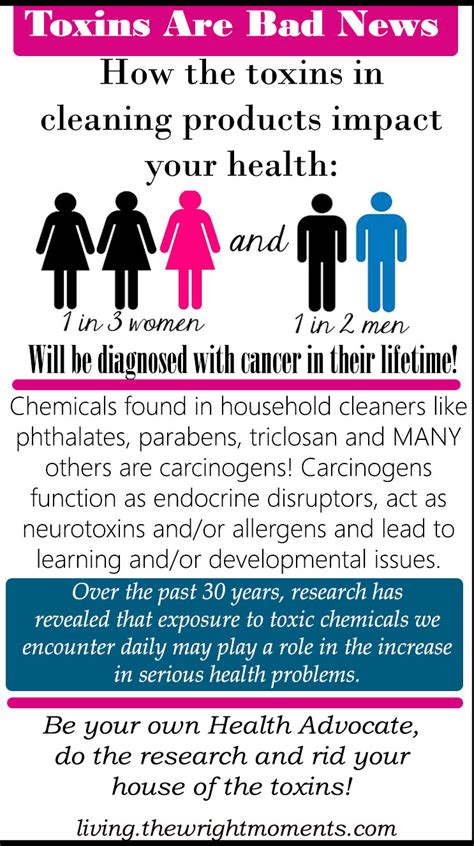 toxic household cleaners toxic dangers of household cleaners living wright