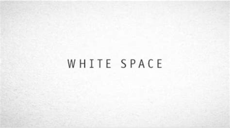 wordpress white space layout 15 best practices every wordpress web designer must know