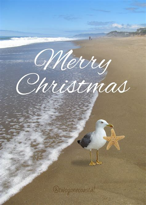 merry christmas pinterest friends coastal christmas beach christmas beach signs