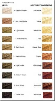 hair color scale pravana hair color scale brown hairs