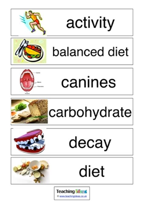 carbohydrates vocabulary teeth and healthy vocabulary teaching ideas