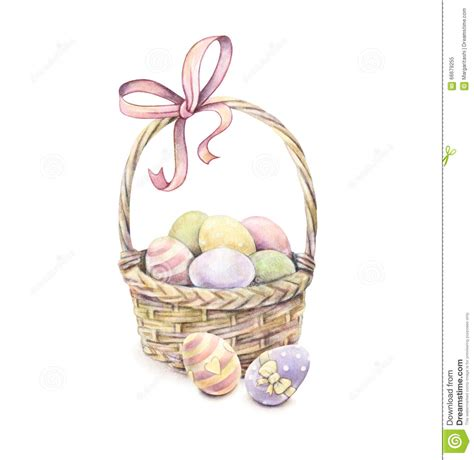 Kaos Bunny And Egg Basket Drawing easter basket isolated on a white background color easter