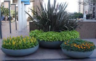 Large Potted Plants For Patio by Design Ideas Patio Garden Planter Ideas