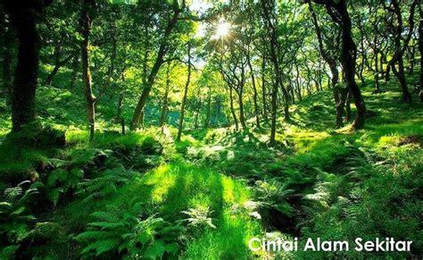 Cinta Alam cinta kepada alam sekitar dan pencipta alamblogr
