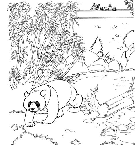 Zoo Coloring Pages Coloringpages1001 Com Zoo Animals Coloring Pages