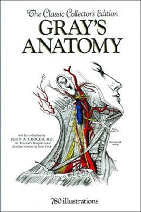 anatomy of a a novel books gray s anatomy by henry gray reviews discussion
