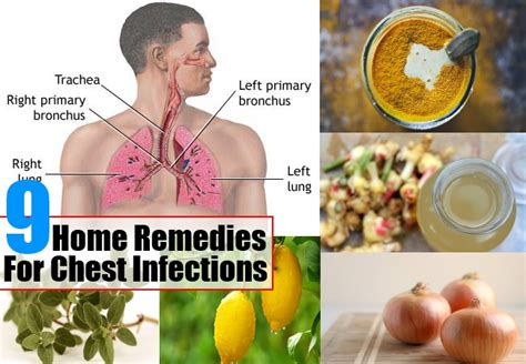 Home Remedies For Chest Due To Gas by 5 Ways To Prevent Asthma Health Care A To Z