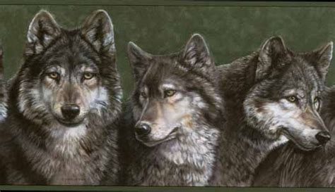 green wolf wallpaper border wallpaper border