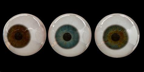 eye tutorial in blender blender market photorealistic human eye set blendernation