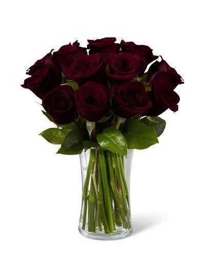 A Dozen Black Roses 65 best plants flowers images on