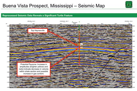louisiana formation map analysis mainland seeks untapped potential of haynesville