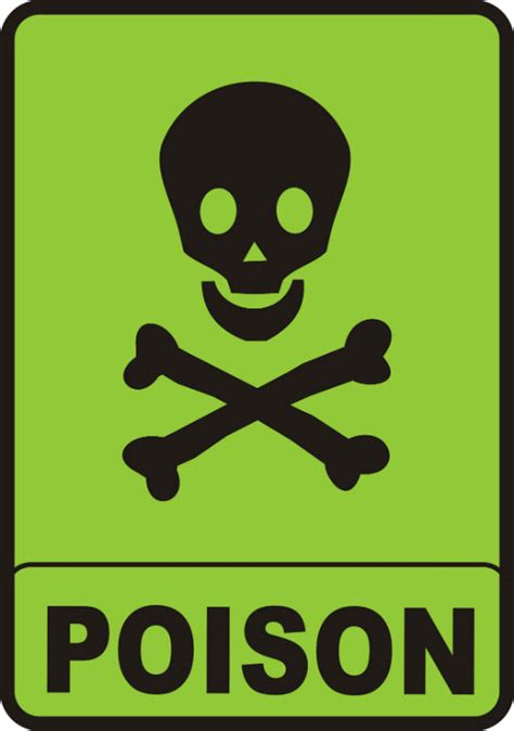 Carbon Monoxide Poisoning From Fireplace by Carbon Monoxide Poisoning Westhton Stove