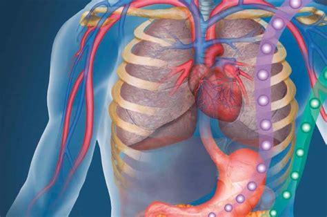 casi clinici medicina interna aggiornamenti clinici in medicina interna