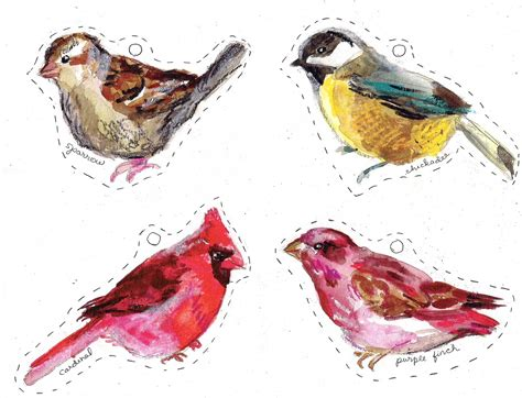 printable images of a bird rebecca s misc winter birds