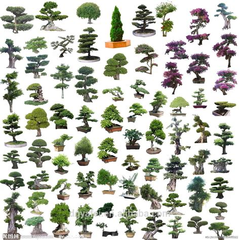 types of garden trees 2014 trees plant type the cheap artificial green plants