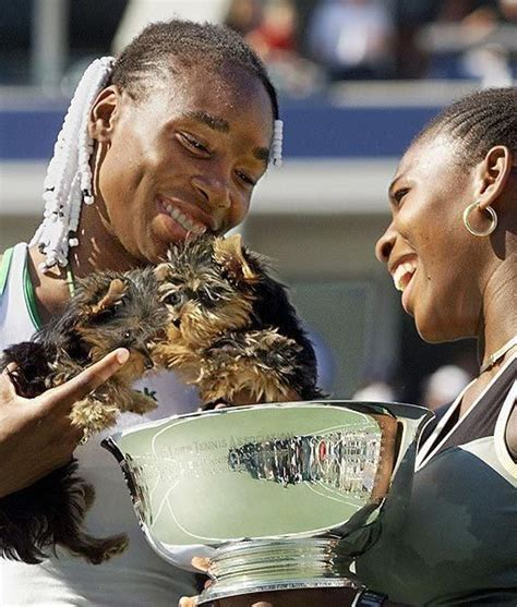 Serena Williams Pooch On The Mound by 166 Best Images About Pet Of The Day By