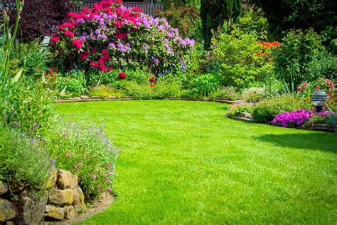 pflegeleichte gärten gestalten ideen f 252 r den pflegeleichten garten ǀ husmann gartenbau