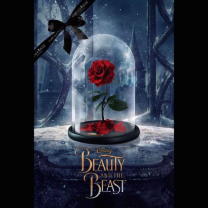 Beauty And The Beast Home Decor the enchanted rose from beauty and the beast is real