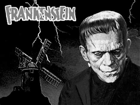 themes in frankenstein chapter 6 reading plan frankenstein by mary shelley timeline