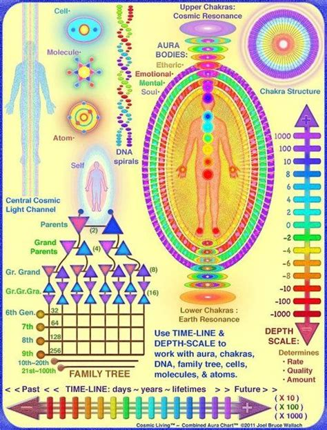 images  pineal gland detox pituitary