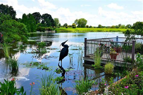 Meet The Sculptor Behind Gardens Gone Wild On Sept 27 Powell Botanical Gardens